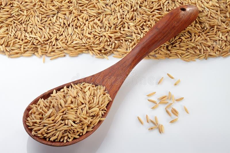在木匙子的稻 免版税图库摄影