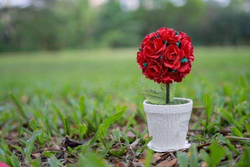 在木地板和拷贝空间安置的盆的英国兰开斯特家族族徽 背景是庭院 英国兰开斯特家族族徽表达爱 在红色玫瑰色华伦泰白色的概念重点 免版税库存图片