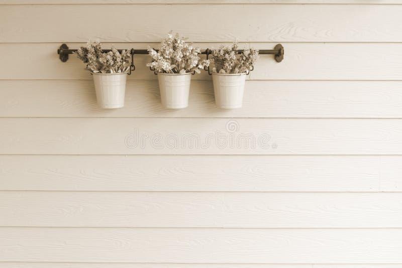 在木墙壁上的小罐花 免版税库存图片