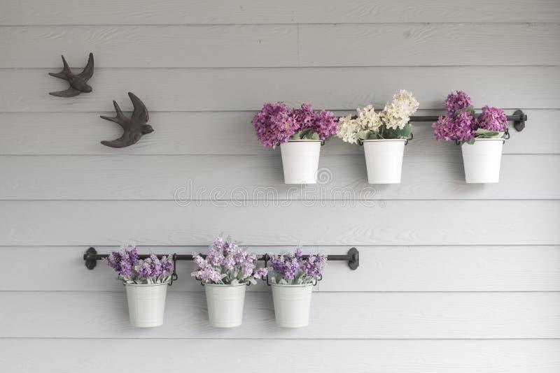 在木墙壁上的小罐花 库存图片