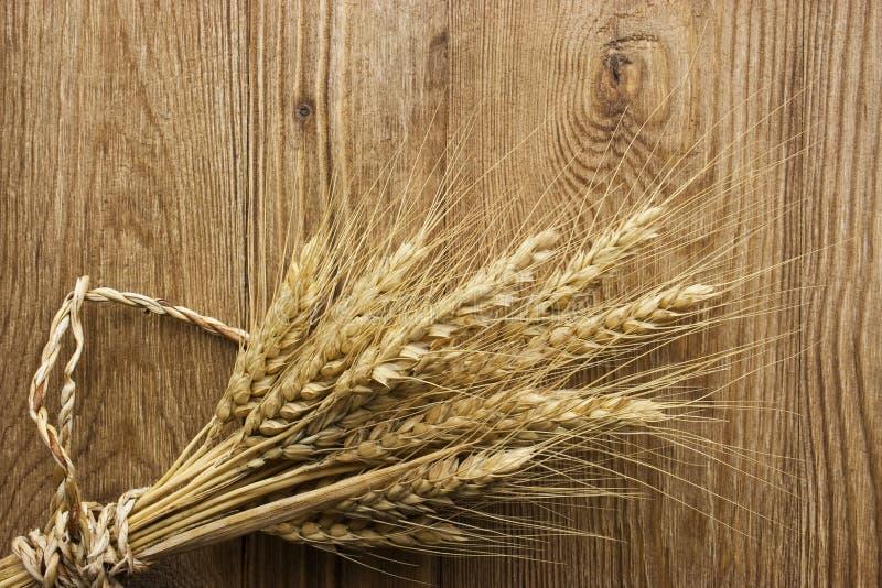 在木头的干麦子茎 免版税库存图片