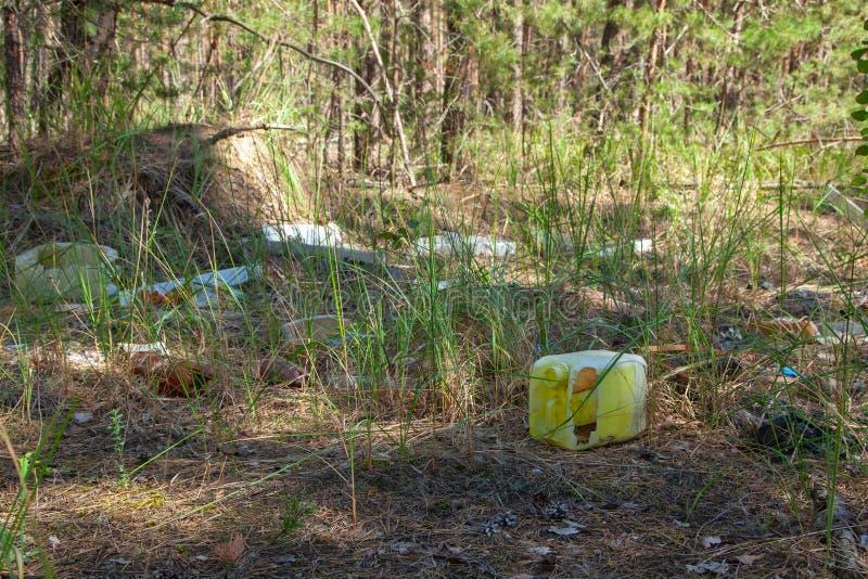 在木头的森林污染的垃圾与塑料和其他人粪尿的 库存图片
