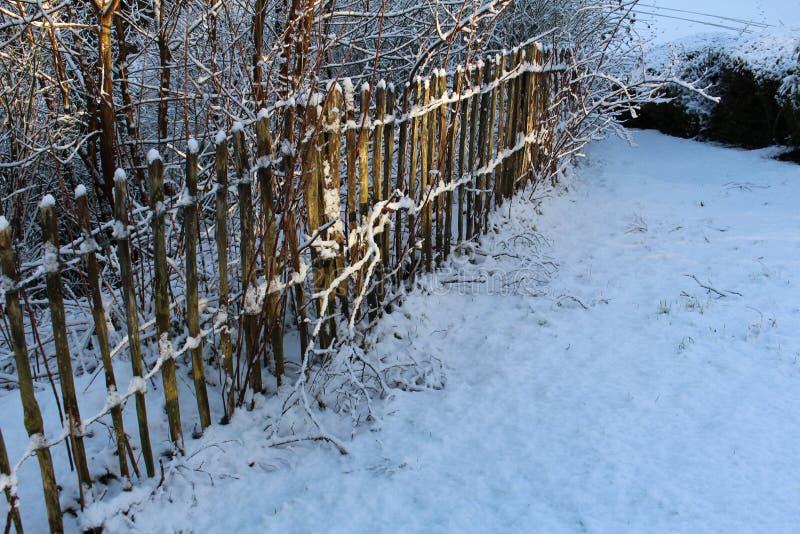 在木尖桩篱栅的降雪 免版税库存照片
