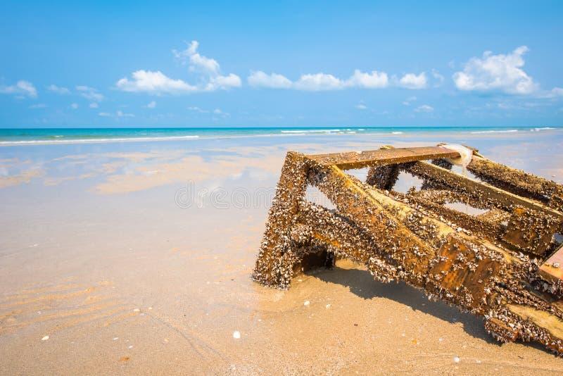 在木材的鹅颈管眼镜在海滩 库存照片