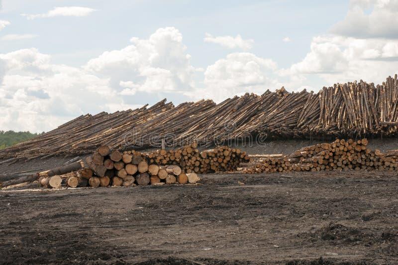 在木材磨房的日志 图库摄影