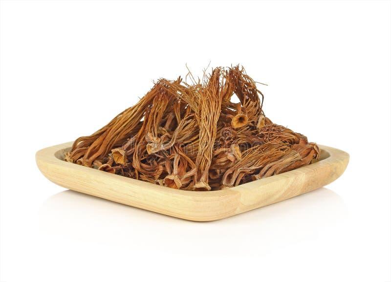在木板材的干燥木棉树木棉在白色背景 库存照片