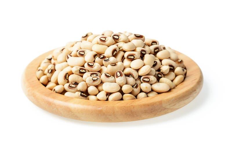 在木板材的白色豇豆豆 库存照片