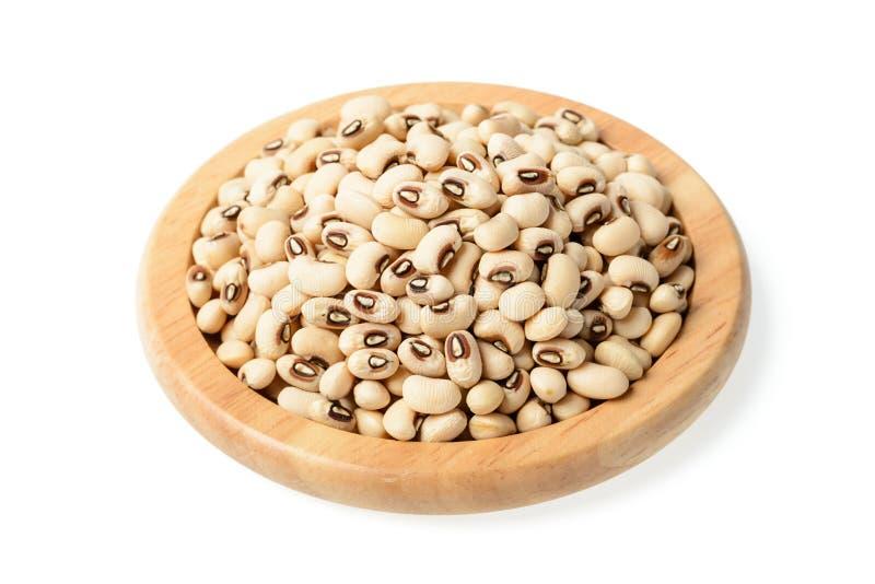 在木板材的白色豇豆豆 免版税库存图片