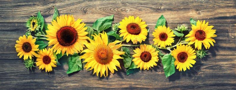 在木板的向日葵 免版税库存图片