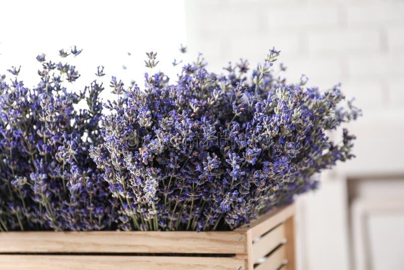 在木板箱的新鲜的淡紫色花在被弄脏的背景 免版税库存图片