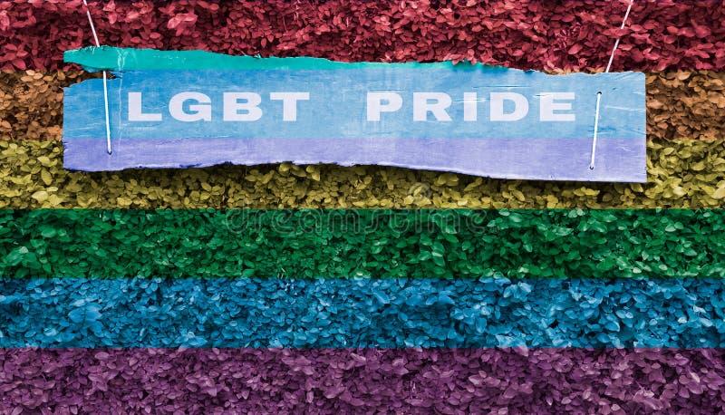 在木标签的LGBT自豪感与LGBT自豪感在coatbu的颜色条纹 库存图片