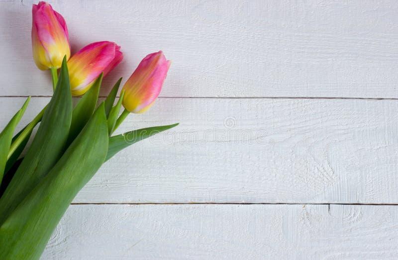 在木桌上的五颜六色的郁金香 库存图片