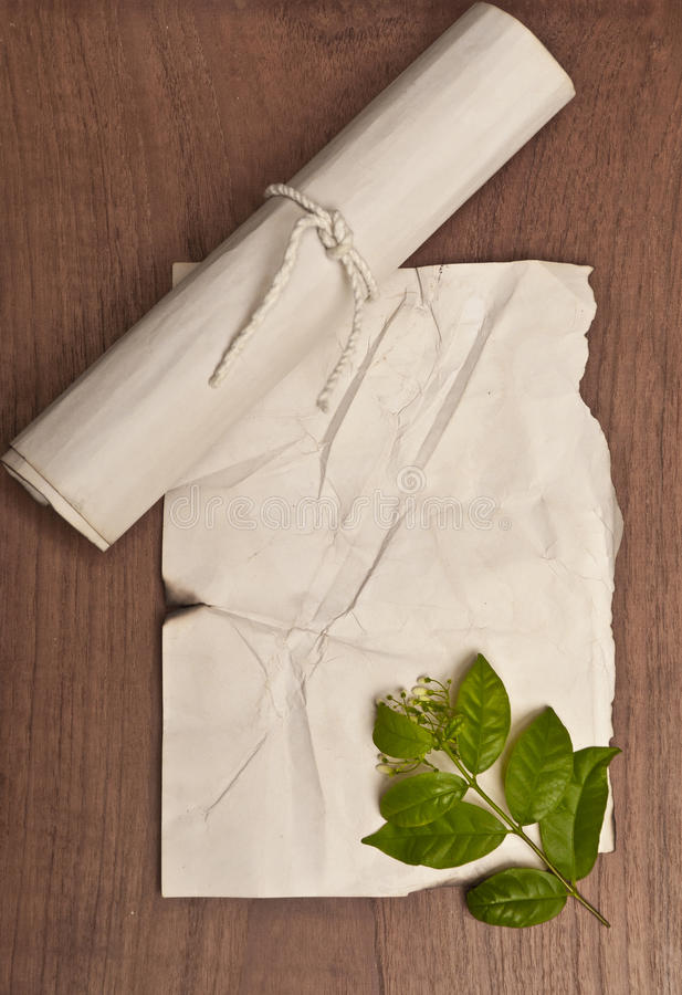 在木桌上的古老被弄皱的纸纸卷与背景的绿色叶子 库存图片