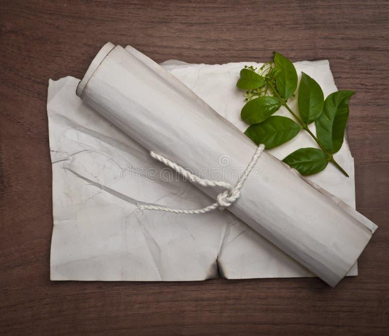 在木桌上的古老被弄皱的纸纸卷与背景的绿色叶子 图库摄影