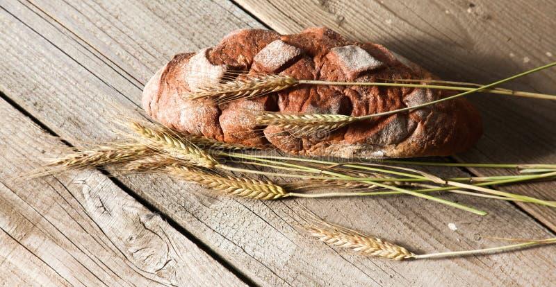 在木桌上的新近地被烘烤的传统面包 免版税图库摄影