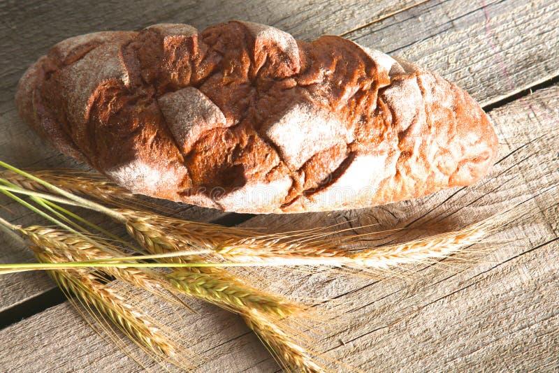 在木桌上的新近地被烘烤的传统面包 库存照片