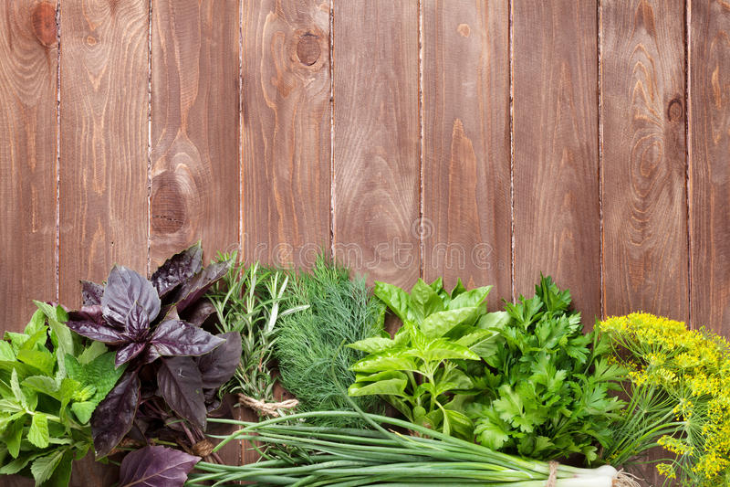 Download 在木桌上的新鲜的庭院草本 库存照片. 图片 包括有 绿色, 工厂, 食物, 阿诺德, 调味料, 生气勃勃 - 72361492