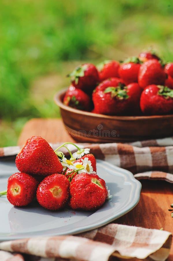 在木桌上的新鲜的有机家庭成长草莓在板材 免版税库存图片