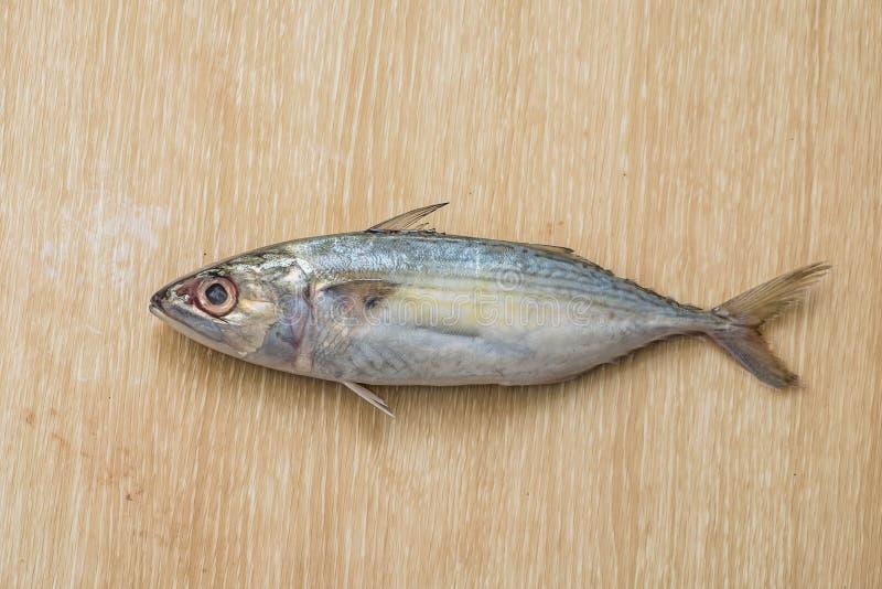 在木桌上的新鲜的海鱼 免版税库存图片
