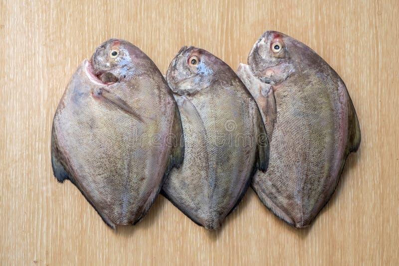 在木桌上的新鲜的海鱼 库存图片