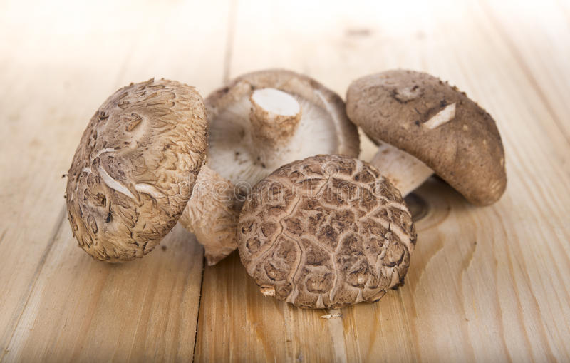 在木桌上的新鲜的什塔克菇 库存照片