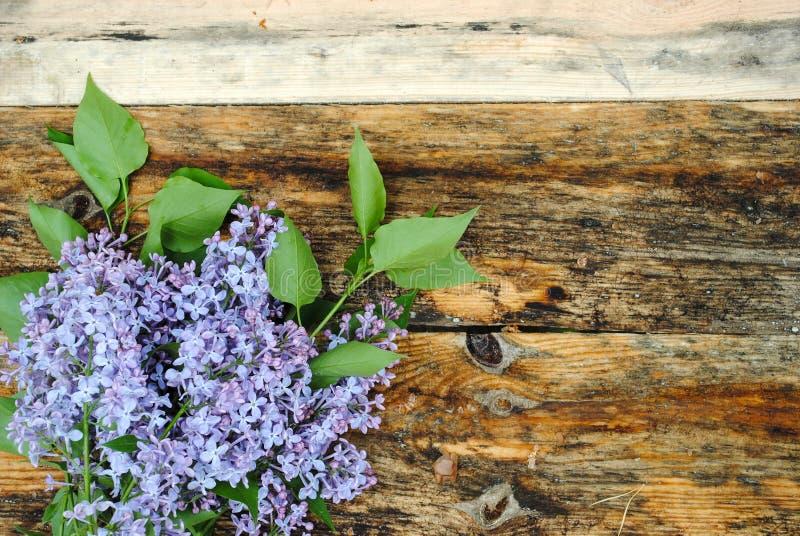 在木桌上的淡紫色花 图库摄影