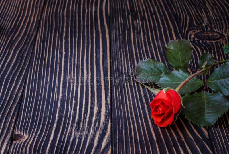 Download 在木桌上的玫瑰 空白董事会 库存照片. 图片 包括有 礼品, 婚礼, 重点, 设计, beautifuler - 72369534