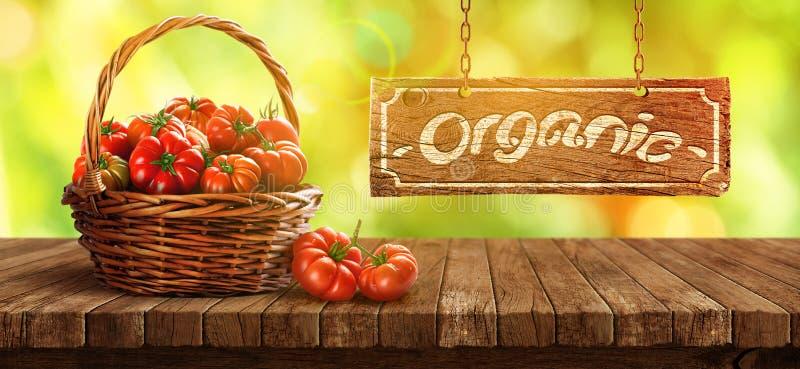 在木桌上的篮子里新鲜的番茄 库存照片