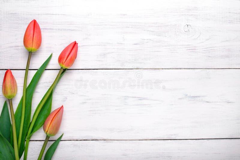 在木桌上的红色郁金香花 顶视图,拷贝空间 免版税图库摄影