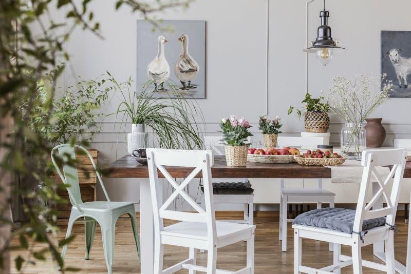 在木桌上的花在与海报和椅子的白色村庄餐厅内部 实际照片 图库摄影