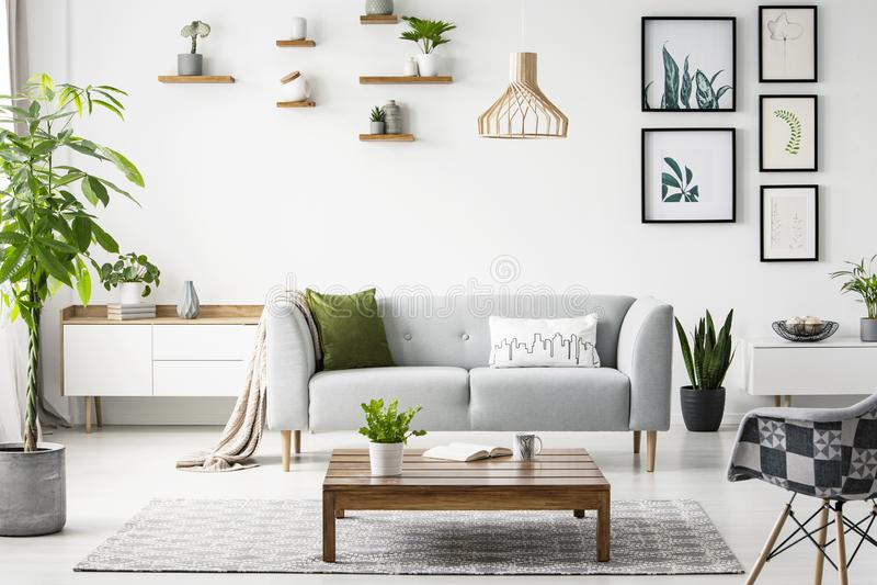 在木桌上的花在scandi的灰色沙发前面平展内部与海报和扶手椅子 实际照片 库存图片