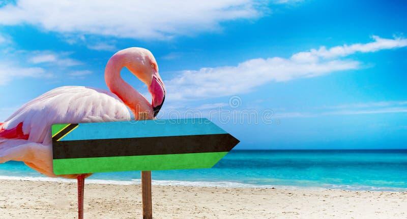 在木桌标志的桑给巴尔旗子在与桃红色火鸟的海滩背景 有海滩和海和天空蔚蓝清楚的水  库存图片