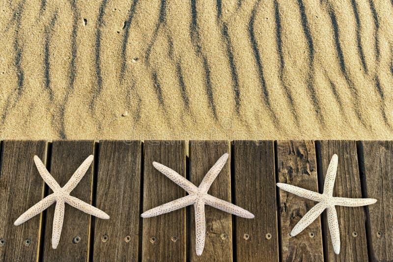 在木甲板的海星有沙子的 库存图片