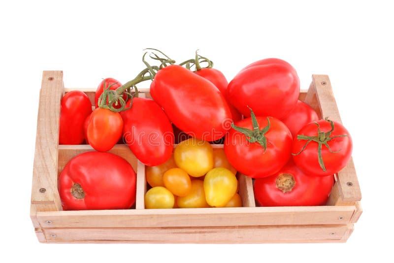 在木箱的多彩多姿的蕃茄 图库摄影