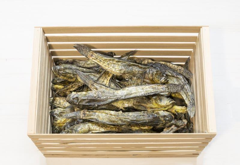 在木箱的干小鱼在白色 啤酒快餐 免版税库存照片