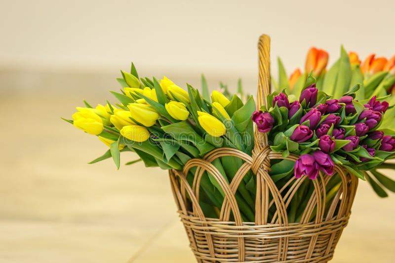 在木篮子的春天郁金香 库存照片