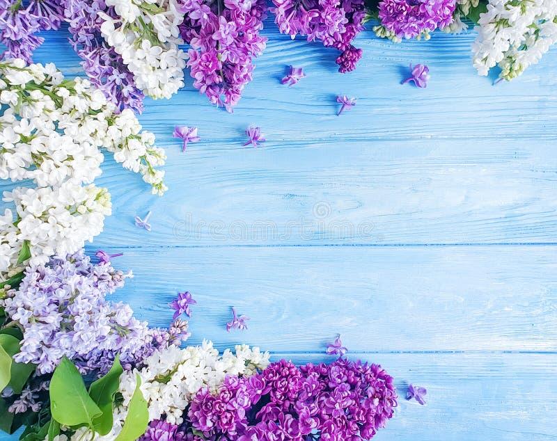 在木背景庆祝框架的美好的淡紫色花纹花样季节性安排 图库摄影