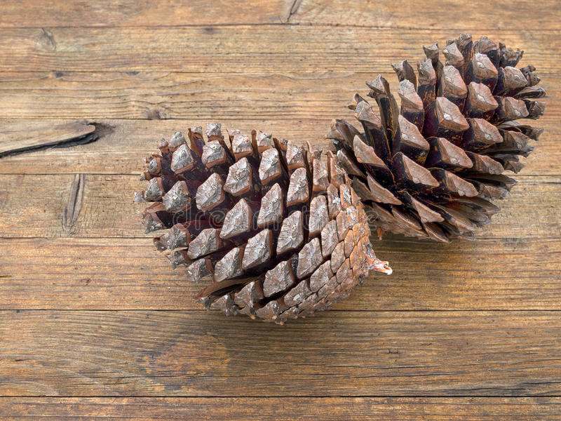 在木背景的两个大杉木锥体 自然 免版税库存照片