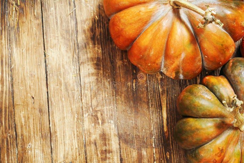 在木背景的南瓜 南瓜秋天静物画在一个棕色木地板上的 南瓜从顶面点的特写镜头射击 免版税库存图片