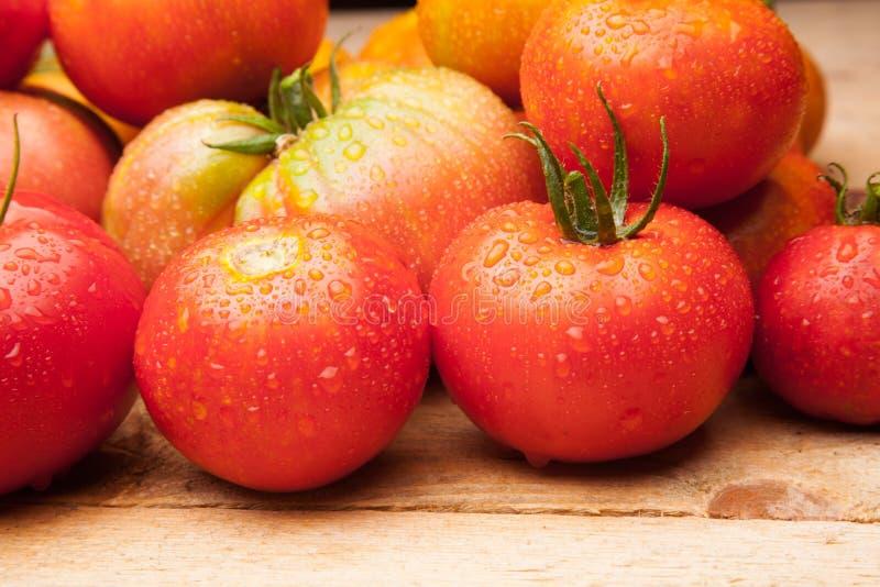 在木背景的成熟蕃茄 免版税库存图片