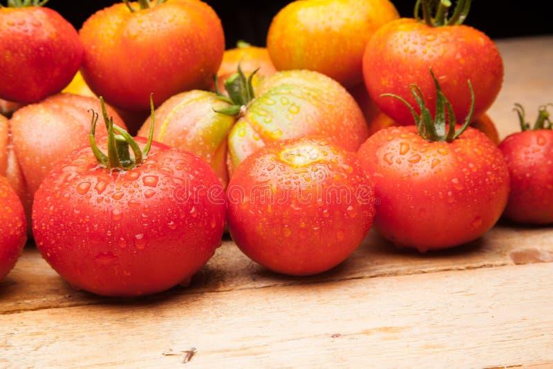 在木背景的成熟蕃茄 库存照片