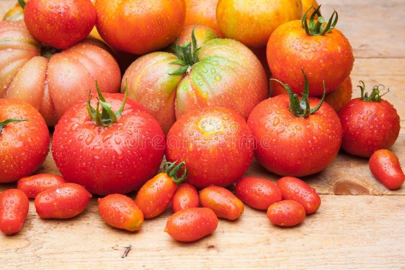 在木背景的成熟蕃茄 免版税库存照片