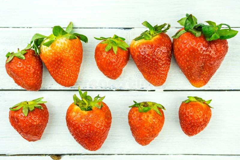 在木背景的新近地被收获的草莓 在白色木头的水多的草莓 图库摄影