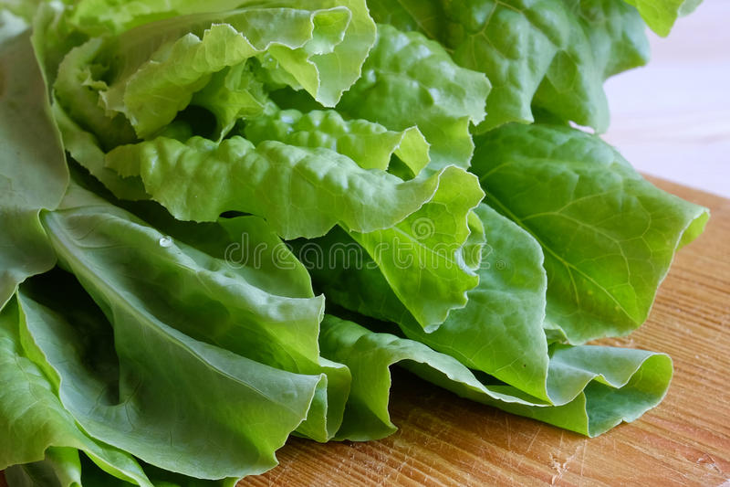 在木背景的新鲜的绿色莴苣 免版税图库摄影