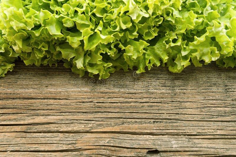 在木背景的新绿色莴苣salat 健康的食物 图库摄影
