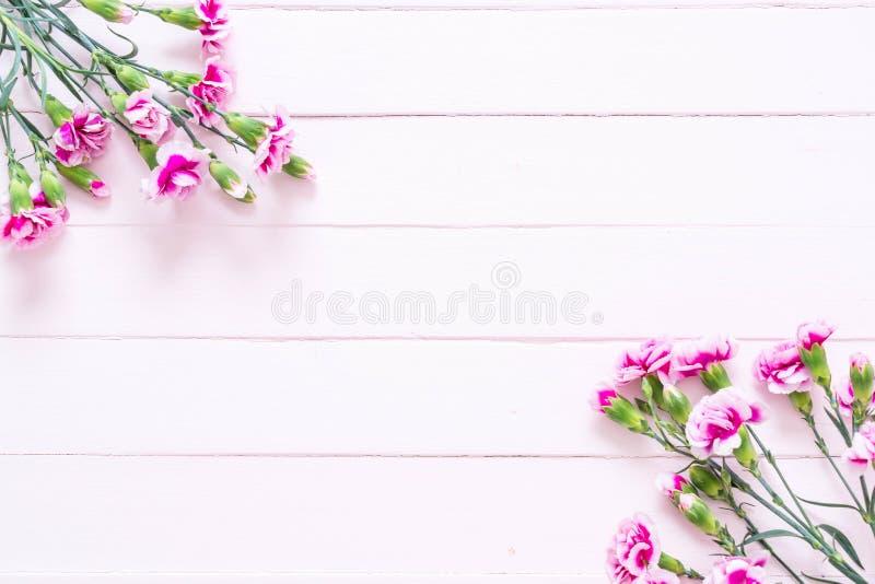 在木背景的桃红色春天花 库存照片