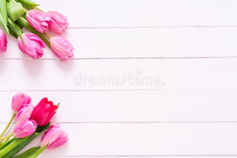 在木背景的桃红色郁金香花 图库摄影
