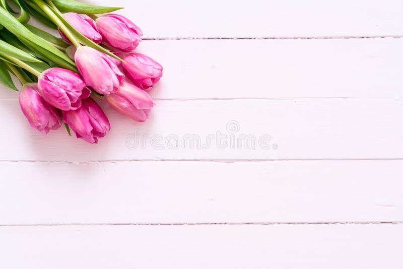 在木背景的桃红色郁金香花 库存图片