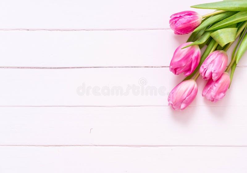 在木背景的桃红色郁金香花 免版税库存图片