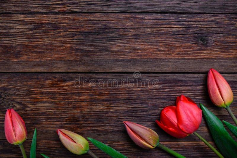 在木背景的红色郁金香春天花 顶视图,拷贝空间 免版税库存照片
